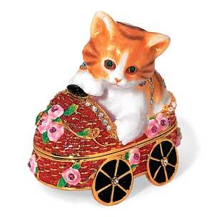 gattino in macchina
